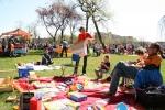 koninginnedag-volkspark-2012-8500.jpg
